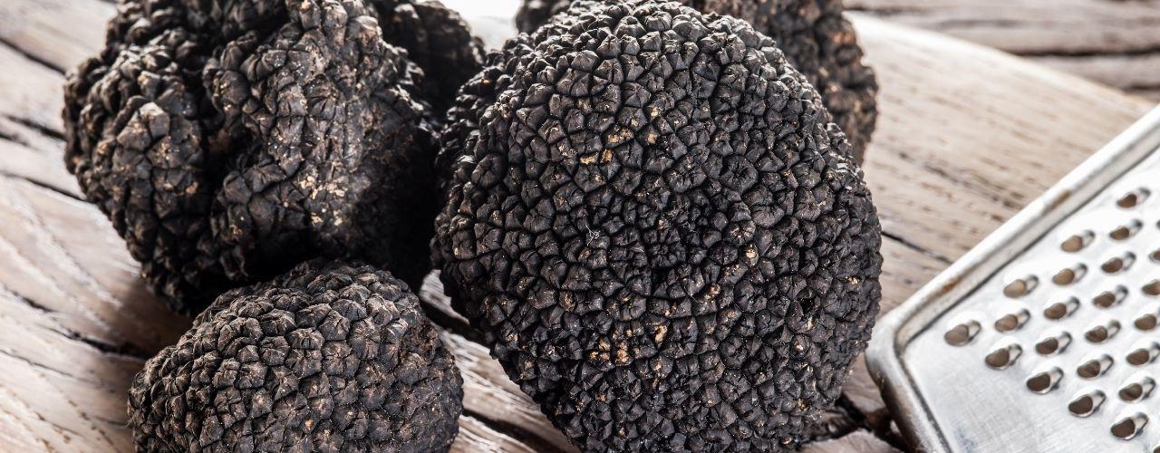 tartufo nero ordinario caratteristiche e prezzi